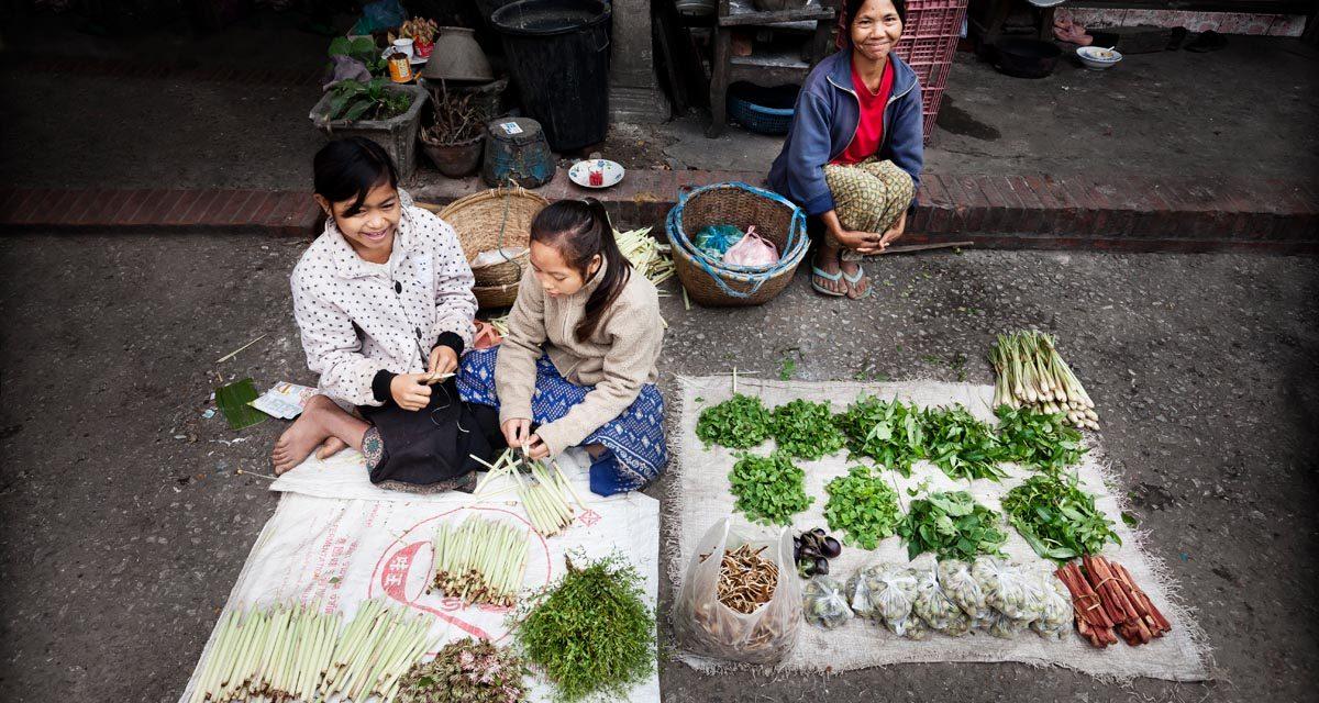 Luang Prabang Morning Market / Laos
