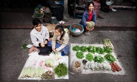 Luang Prabang Morning Market / Laos