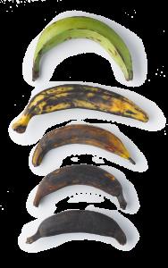 Kochbananen Reifegrad