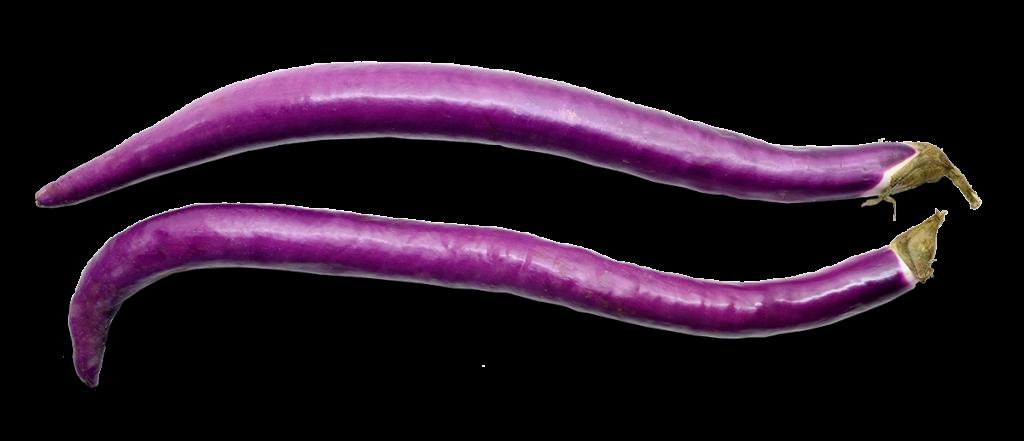 aubergine_duenn